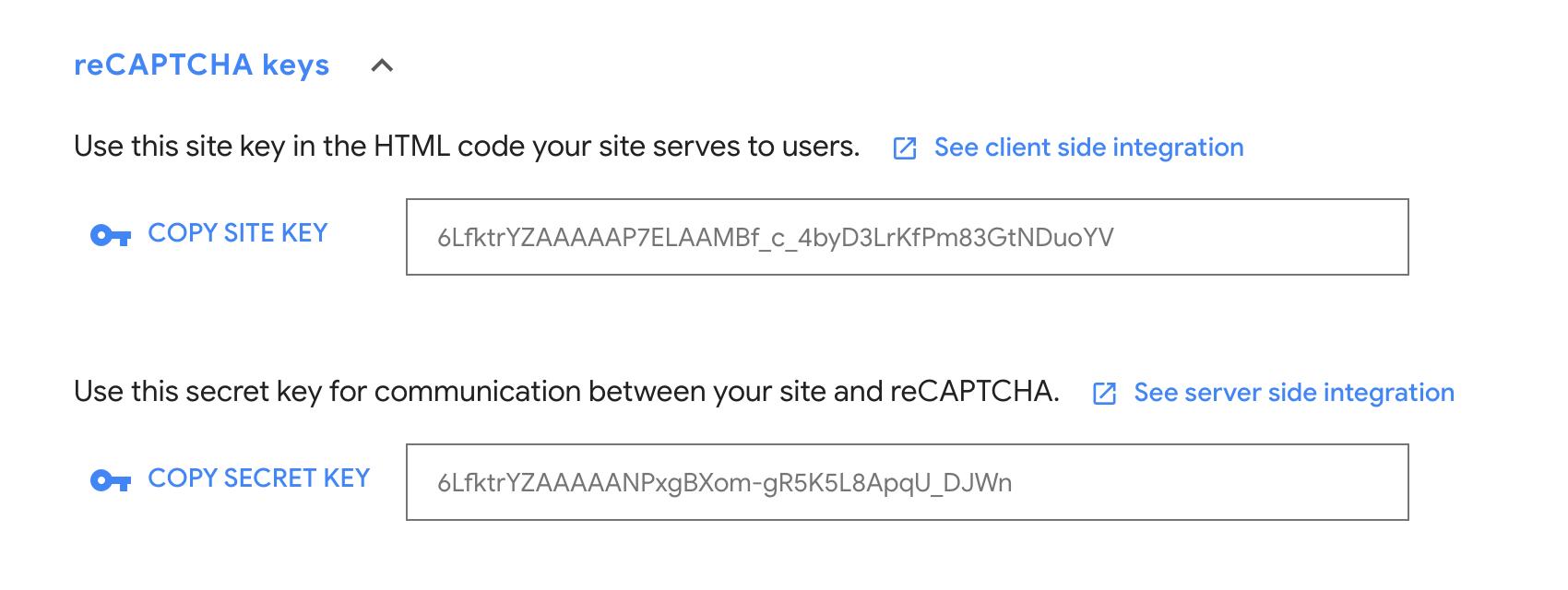 Google reCAPTCHA keys.